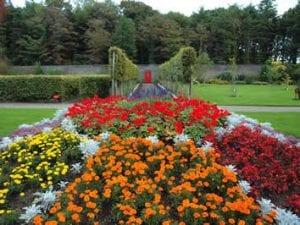 Vandeleur Gardens