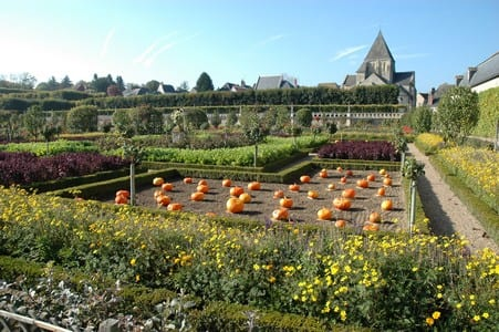 Villandry chateau and gardens.Join us on our Loire Valley car tour